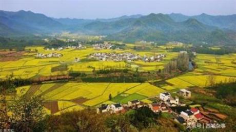 新野县王集镇等两个乡镇土地整治项目工程复核和土地重估、登记、评价项目